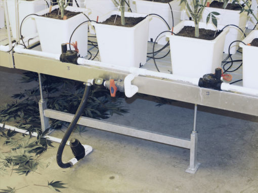 Rolling Benches / Ebb & Flow Tables for Commercial Marijuana